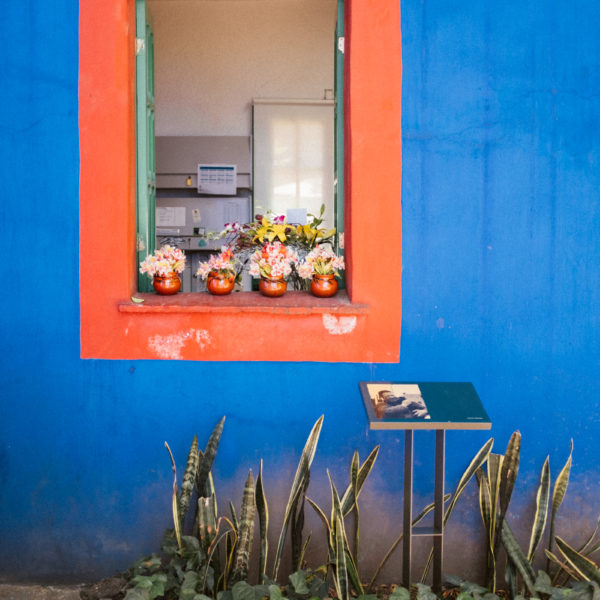 frida-kahlo-casa-azul-mexico-city-8684